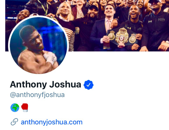 The Rogue Anthony Joshua