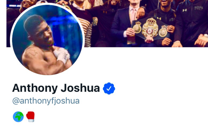 The Rogue AnthonyJoshua